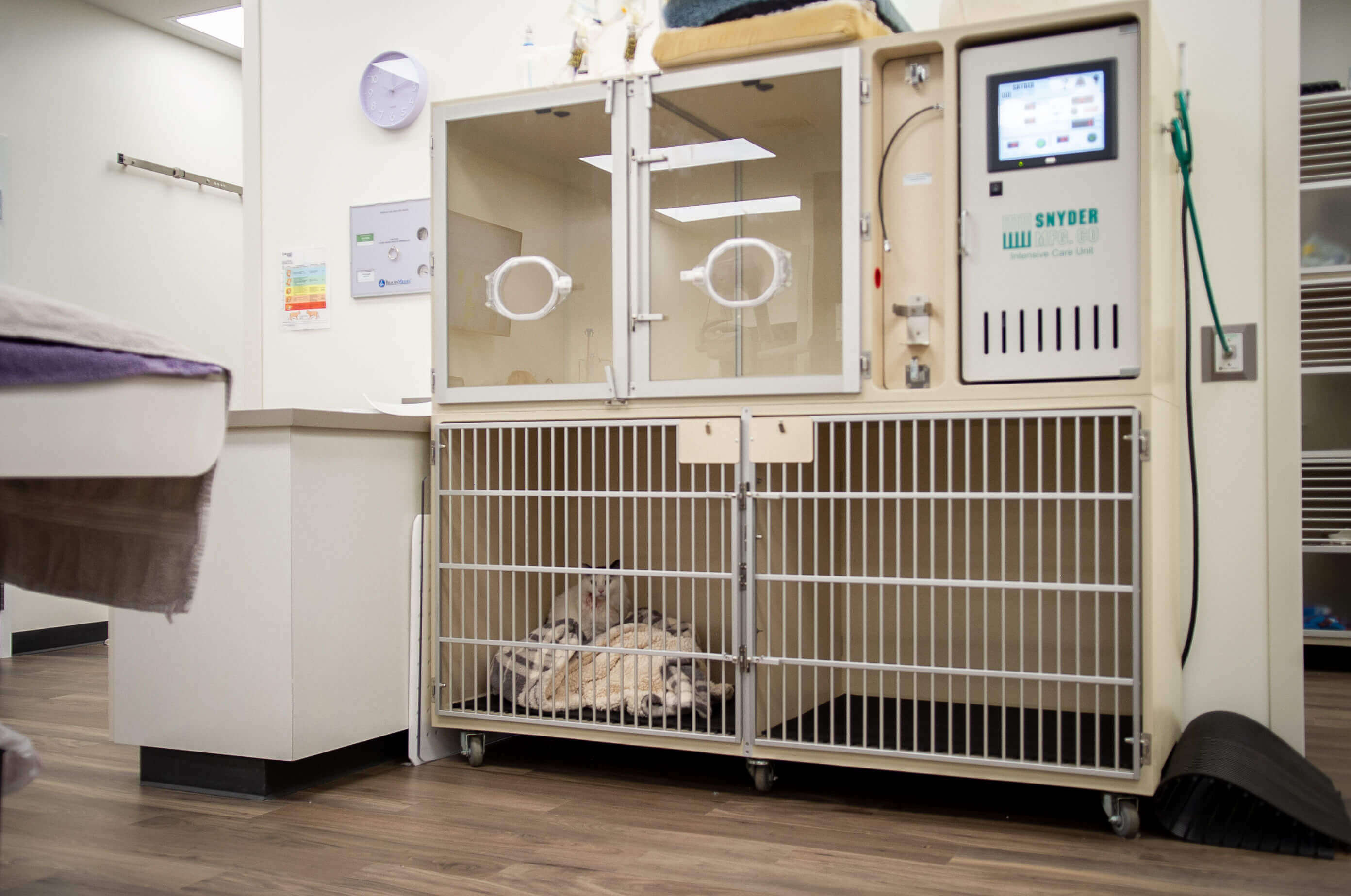Surgical recovery and oxygen cages